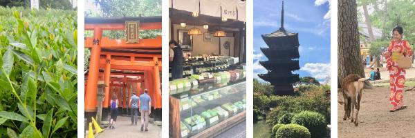 japan-newsletter-bar